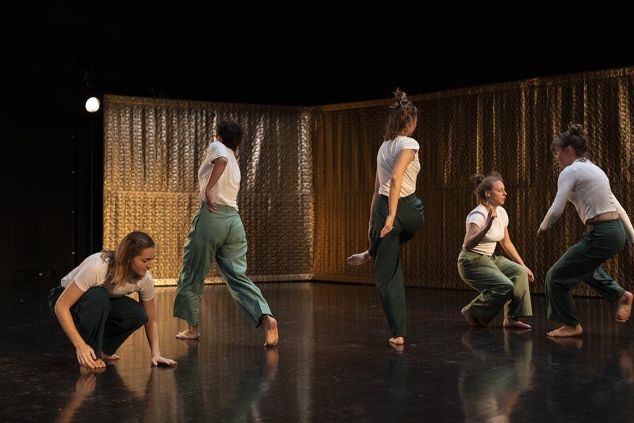 Skupa, plesna predstava